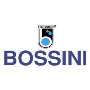 logo-bossini-tit93-300x300